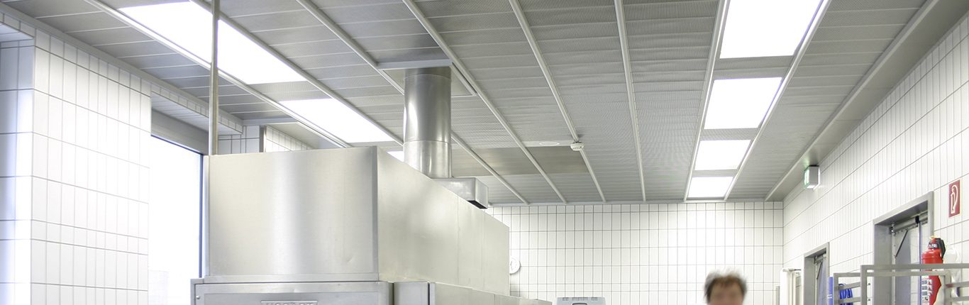 Nett Bilder Küchendecken Zeitgenössisch - Küchen Ideen - celluwood.com